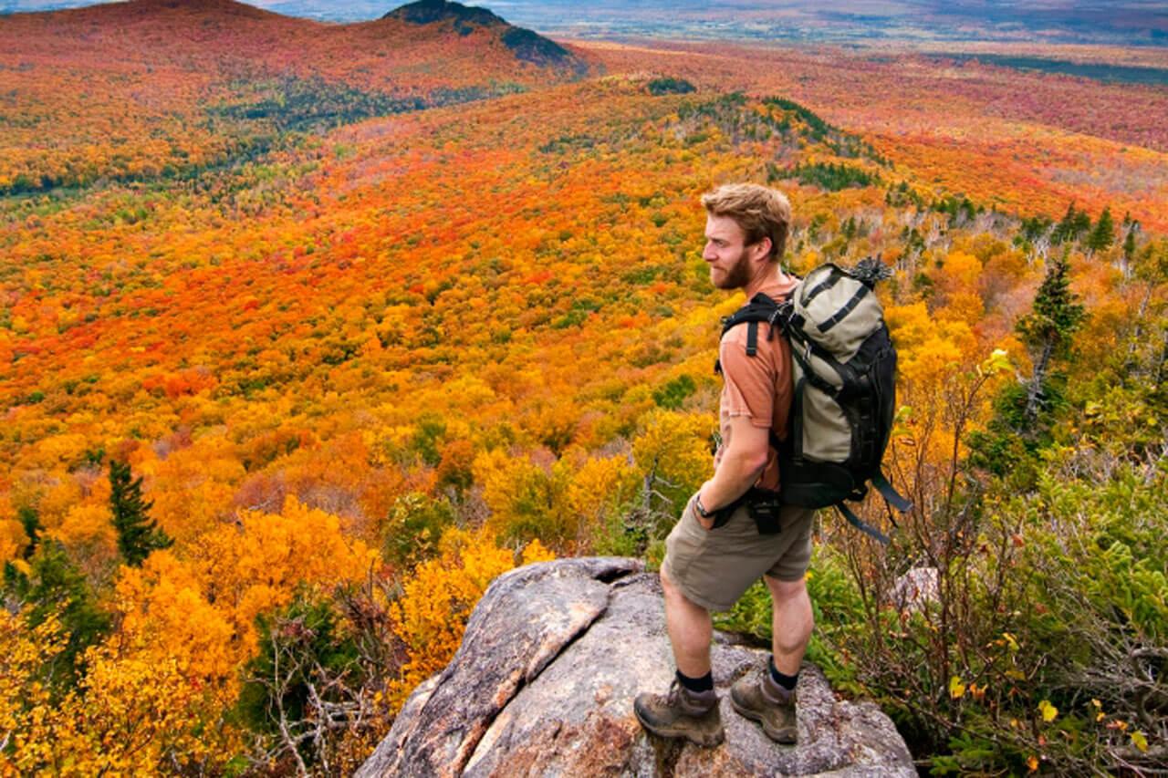 Résultats de recherche d'images pour «Parc National de la Jacques-Cartier automne»
