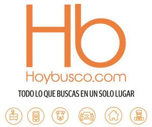 Hoybusco.com