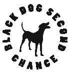BDSC Logo