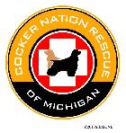 CNR of MI Logo