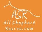 All Shepherd Rescue