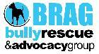 BRAG, Inc Logo