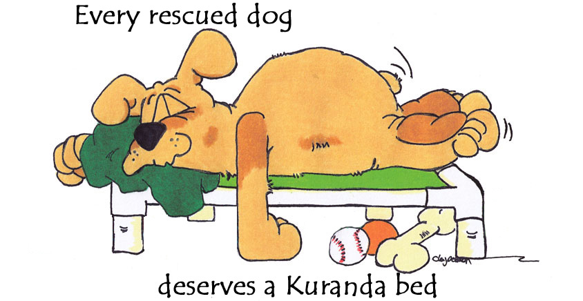 Kuranda Deserving Dog