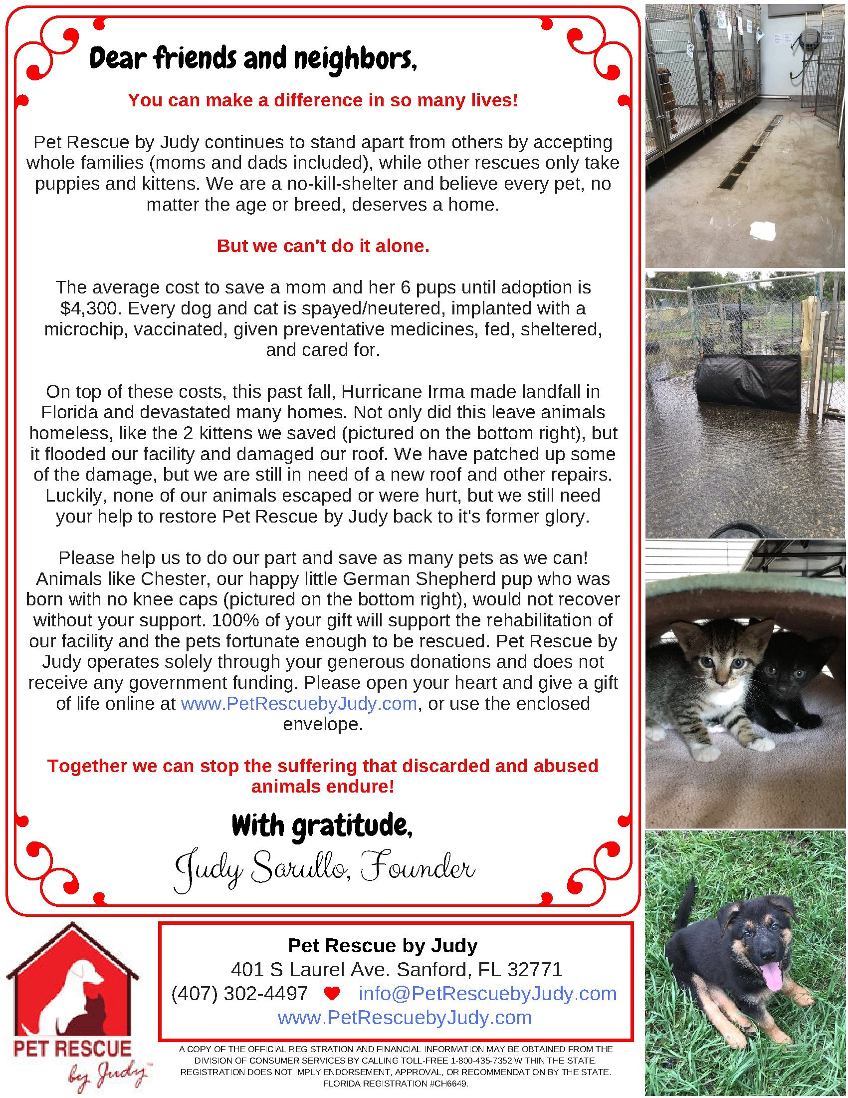 Wel e to Pet Rescue By Judy