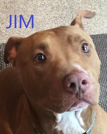 Jim potw dog 9..23.20
