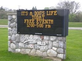 Its A Dog's Life #2