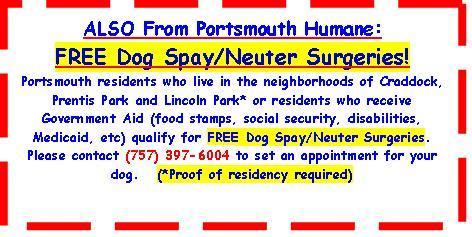 freedogsurgeries