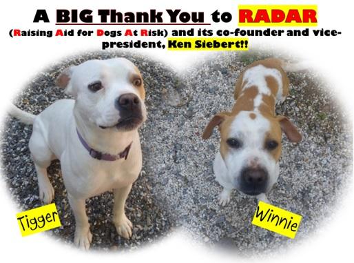RADAR Pic Tigger and Winnie