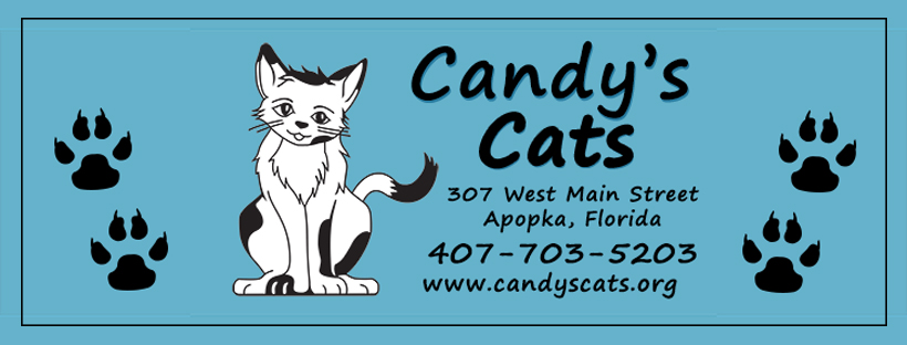 Welcome to Candy's Cats