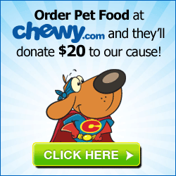Chewy Banner