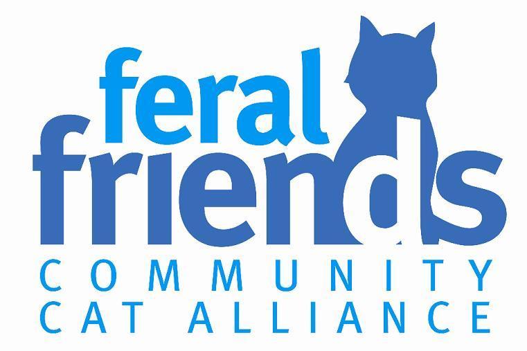 New FF Logo Centered