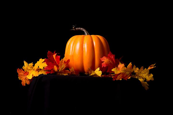 pumpkin/leaves