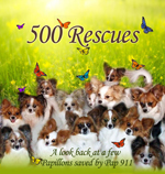 500 Rescues