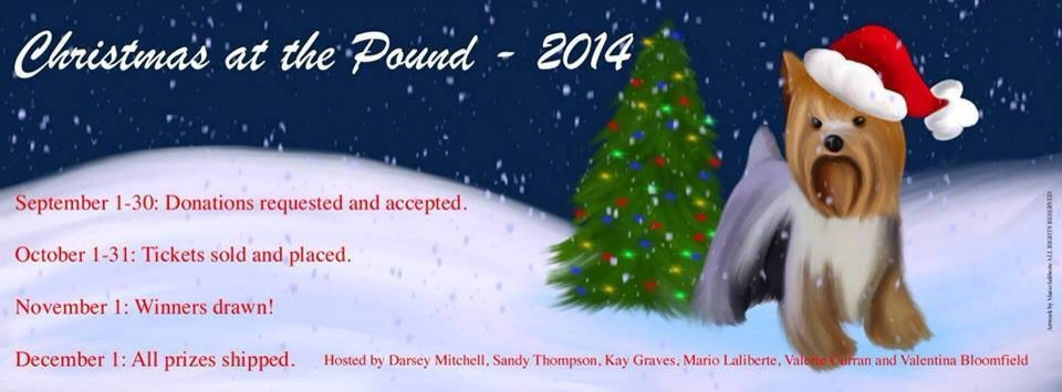 Christmas at the Pound