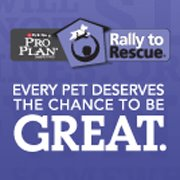 Ralley to Rescue Facebook Logo
