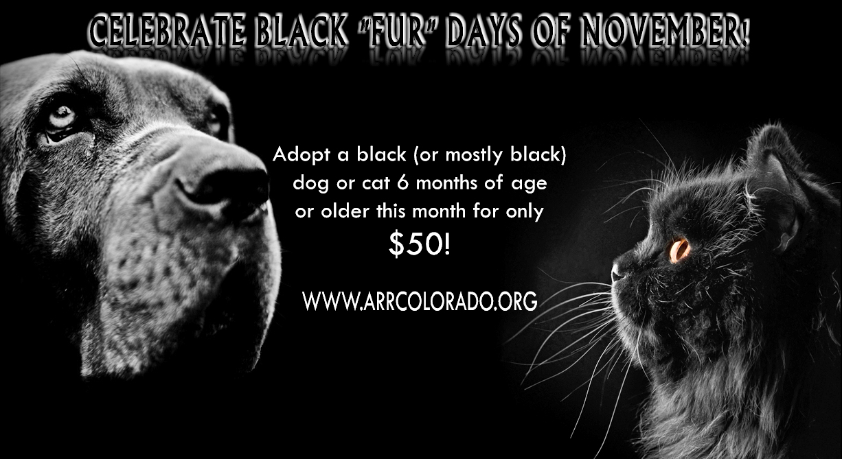Black FurDays Image