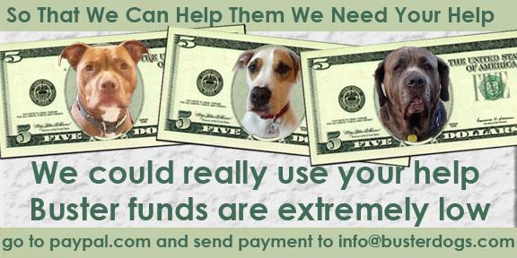 Buster-LowFunds-billboard