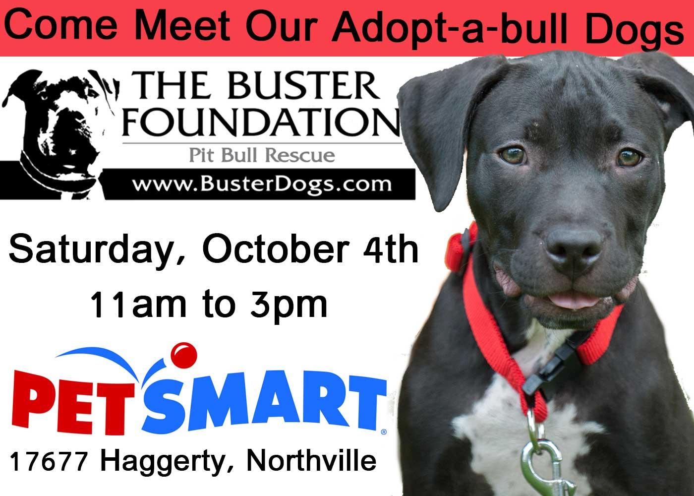 Petsmart Oct 4 Adoption