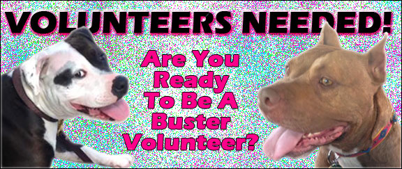 Volunteer Billboard2