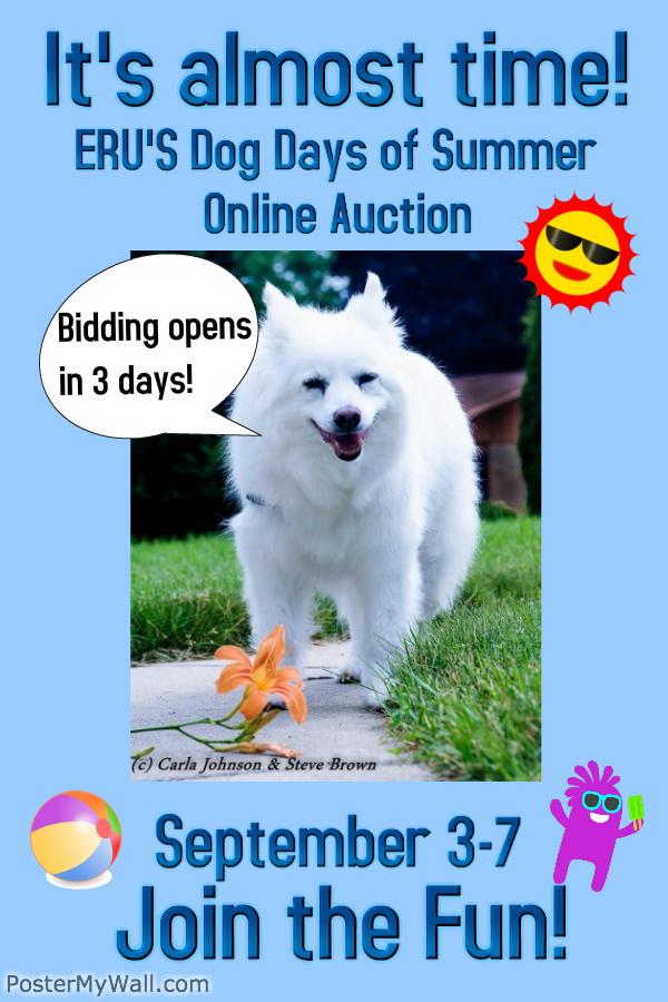auctionposter3moredays