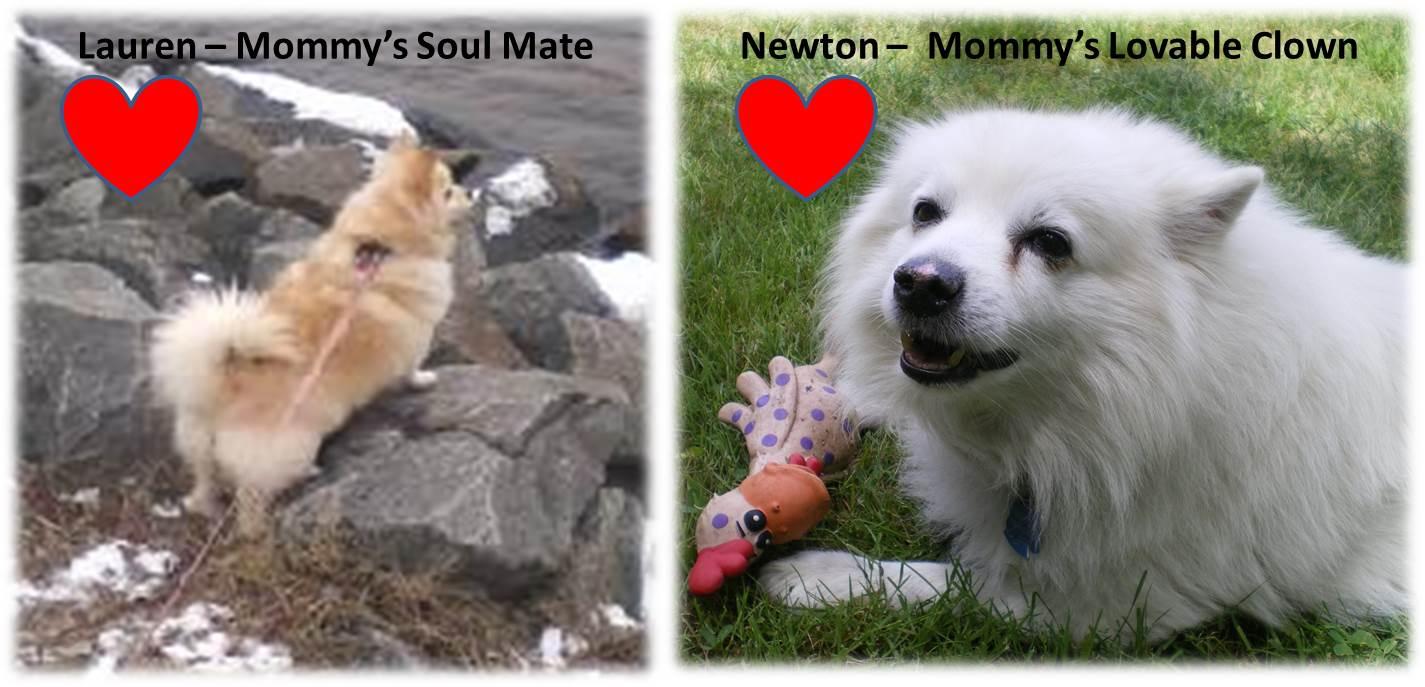 Newton&Lauren
