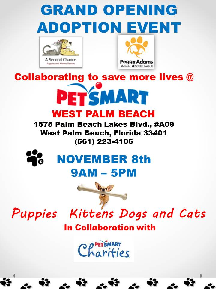 PetSmart Grand Opening WPB MAll