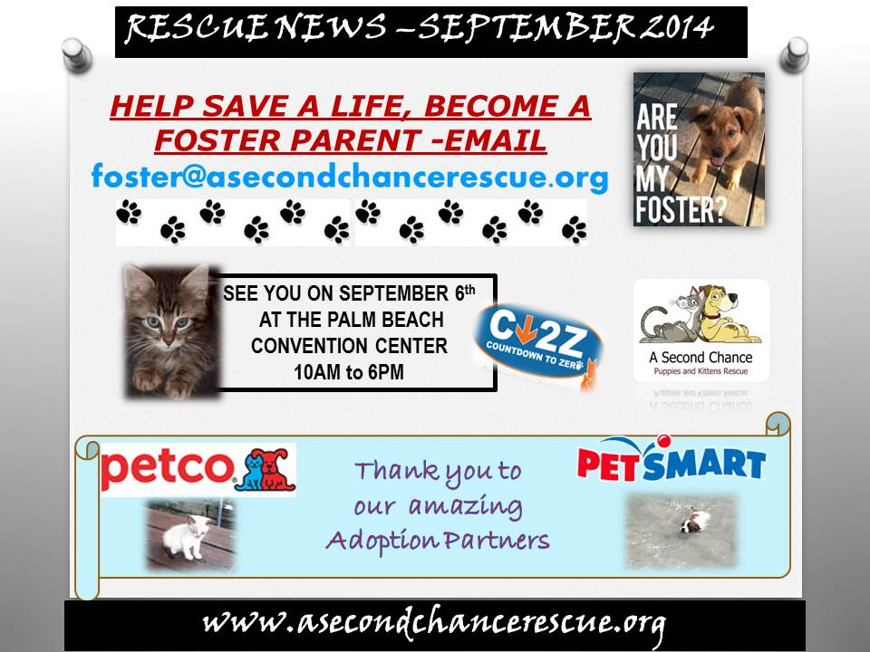 Rescue News September