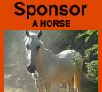 banner sponsor a horse