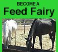 banner feed fairy 2