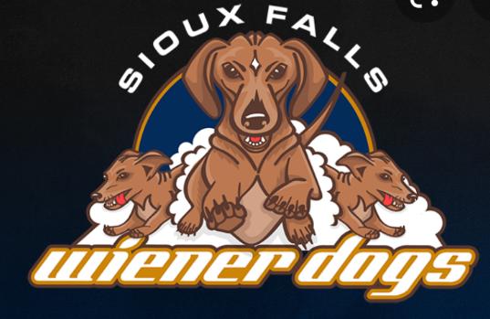 Fighting Wiener Dogs