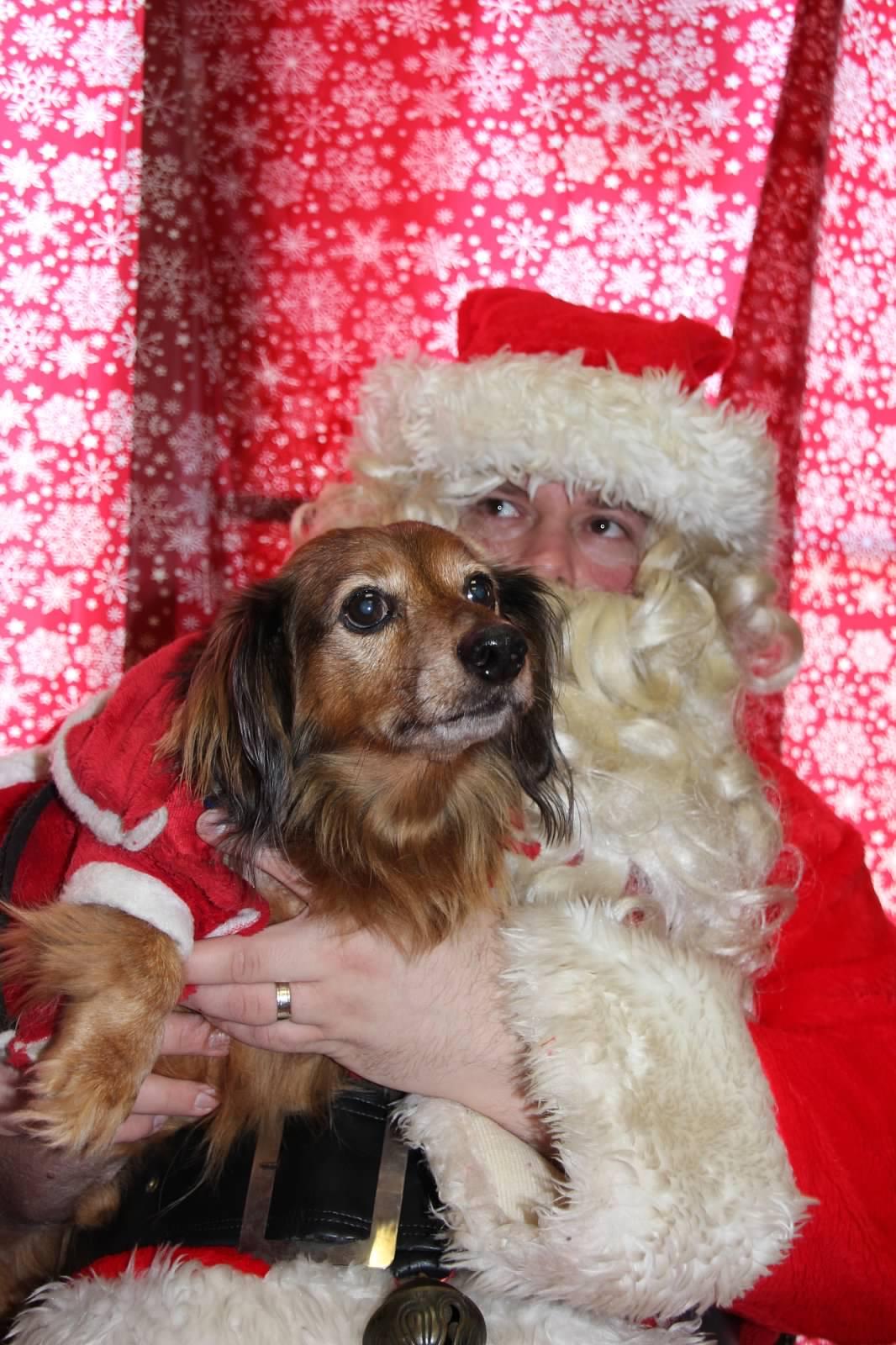 Snoopy and Santa 2015
