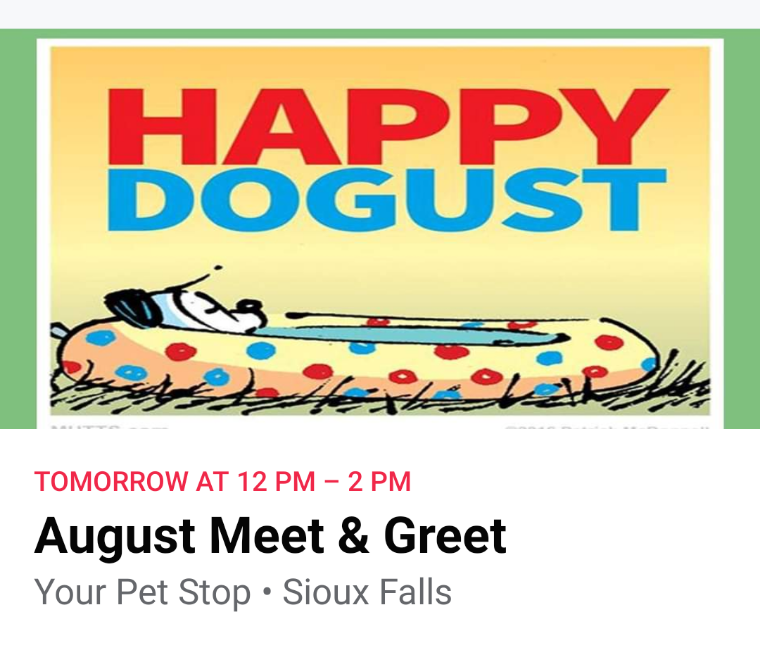 August 2020 Meet and Greet