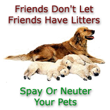 Please Neuter