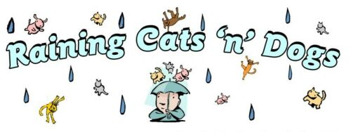 Raining Cats n Dogs Home