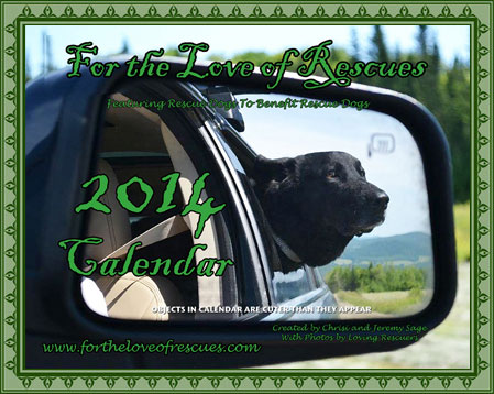 Click to place your order for the 2014 calendars