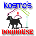 Web Image: Kosmos