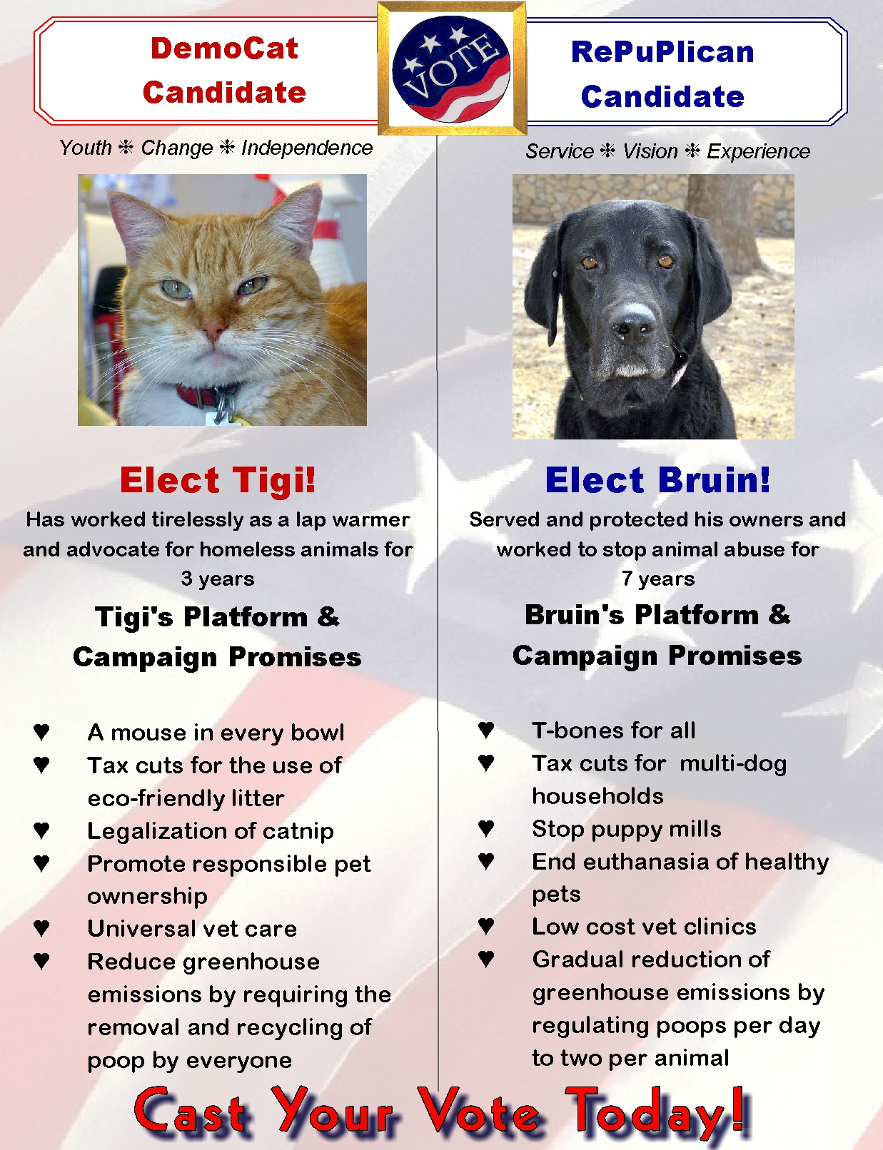 Web Image: Election 2012
