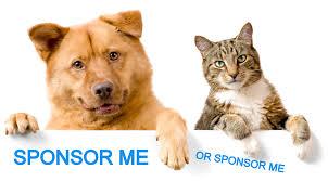 sponsor me