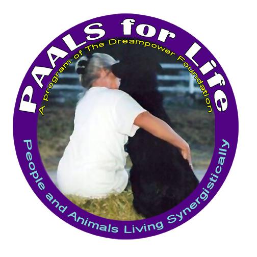 Web Image: PAALS Circle Logo