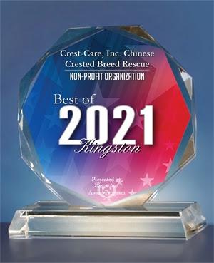 2021 kingston