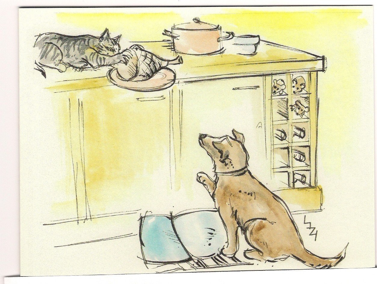 cat,dog,pic