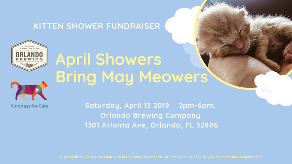 Kitten Shower fundraiser