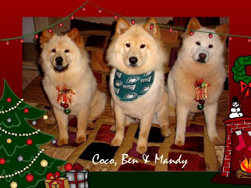 Mary Oetzel Christmas Pups - 2005