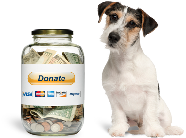 DonationLogo-dog&jar