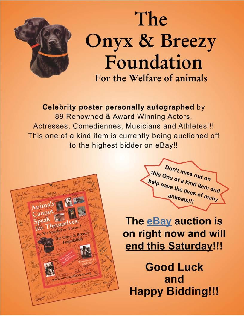 Web Image: Onyx Breezy Auction-2.29.12