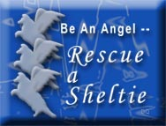 rescue angel 1