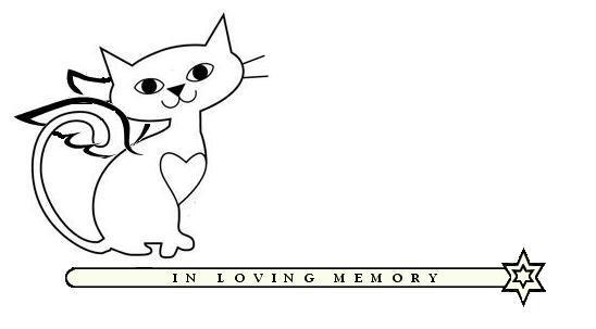 Web Image: FF Kitty Angel Bar b