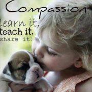 Web Image: compassion
