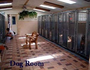 dog_room
