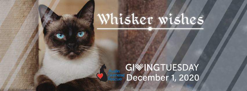 *WhiskerWishes